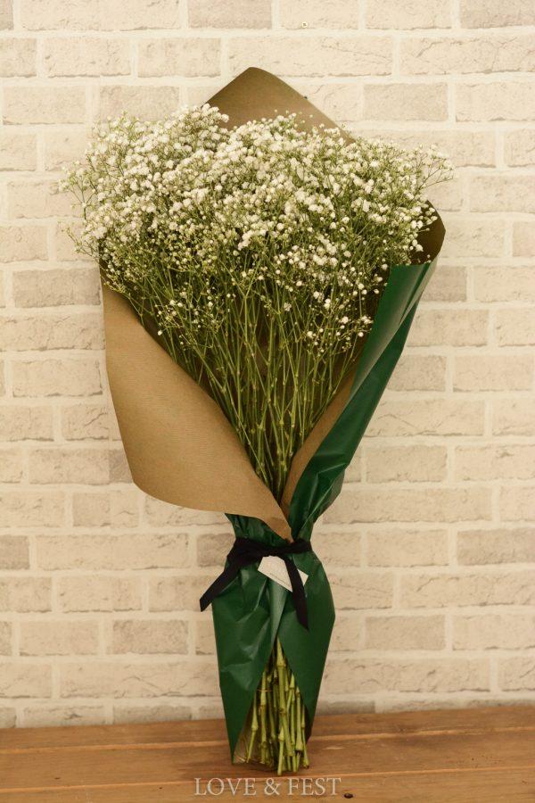 Paniculata natural paquete LOVE&FEST