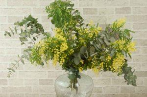 Paquete mimosa y eucalipto LOVE&FEST